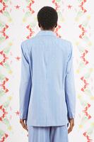 Blue and White Striped Blazer image