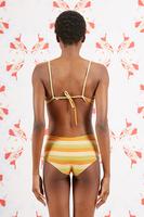 Peach and Tobacco Striped Bikini Top image