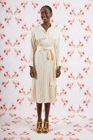Striped shirtdress image