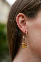 Honey Drop Crystal Earrings with Hoops  image