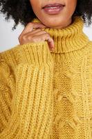 Mustard boyfriend cable knit turtleneck   image