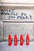 La Vita è Bella Water flask  image