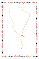 Coral Necklace image