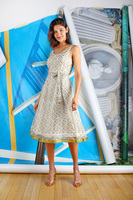 Ivory and Sage Patterned Sleeveless Dress with Full Skirt  image