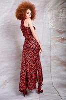 Asymmetrical Animal Print Long Dress image