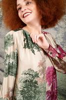 Contrast Toile De Jouy v neck dress  image
