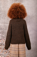 Chocolate melange sweater with buttoned neckline  image