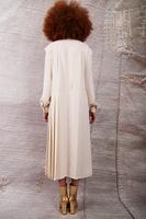 Shirtdress with half pleated skirt  image