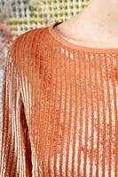 Striped velvet top  image