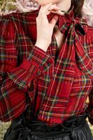 Plaid blouse with tie neckline  image