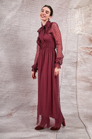 Wine dress in dotted mesh  image